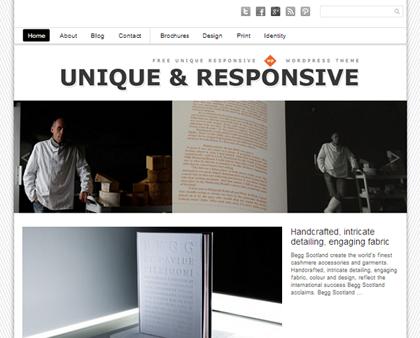 Unique Responsive WordPress Themes - 16