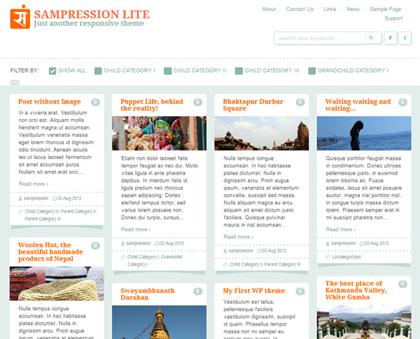 Sampression Lite Responsive WordPress Themes - 8