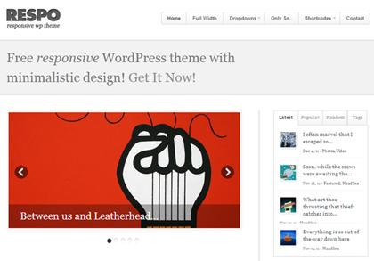 Respo Responsive WordPress Themes - 9