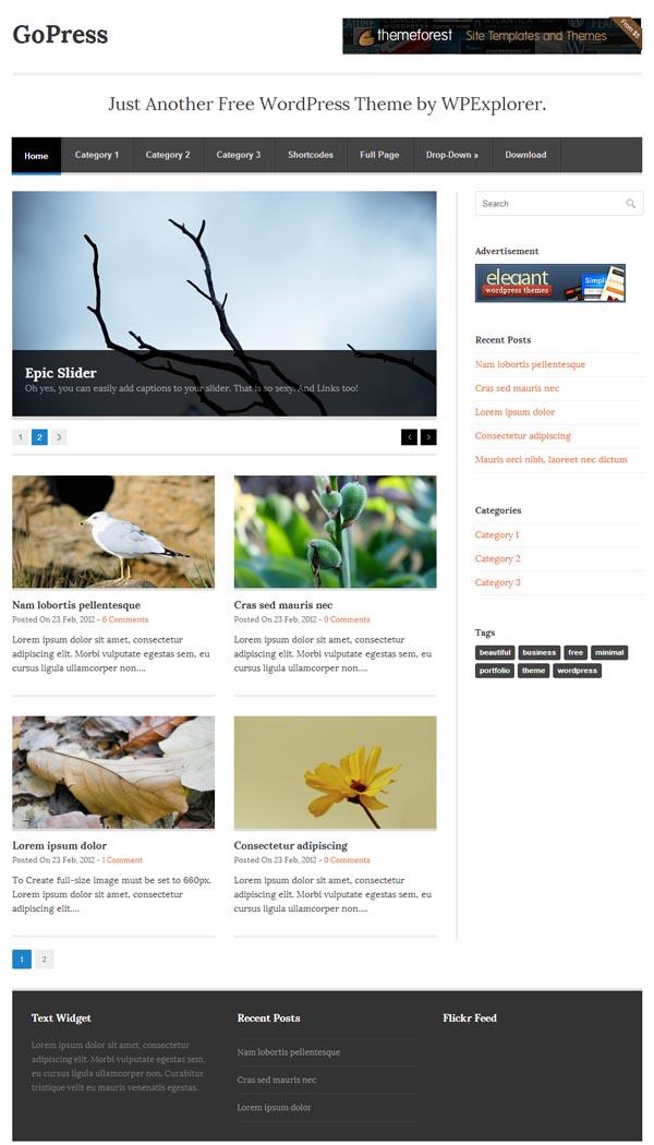 GoPress Responsive WordPress Themes - 12