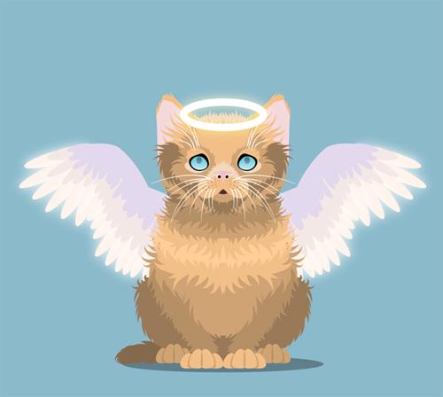Create an Innocent Fluffy Kitten With Basic Shapes in Adobe Illustrator