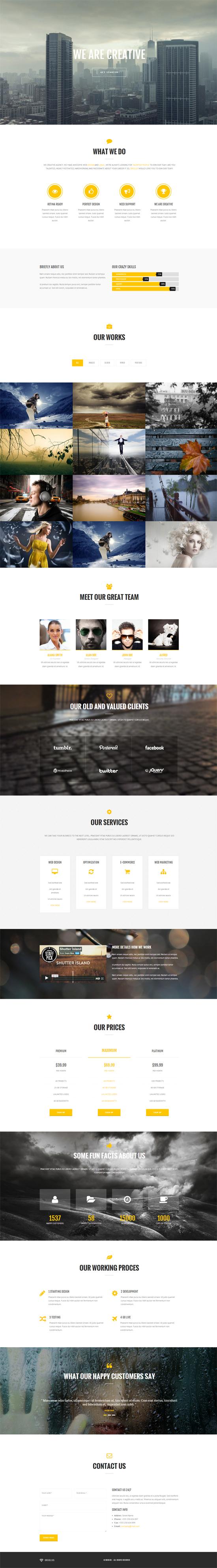 Oriolus - Responsive Onepage WordPress Theme