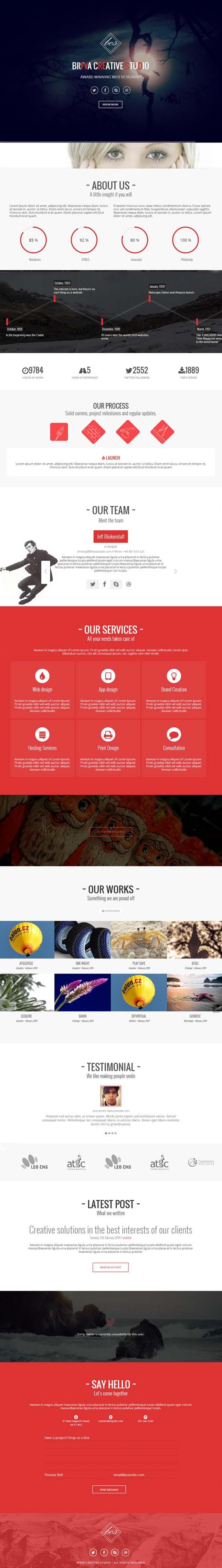 Birva - One Page Responsive WordPress Theme