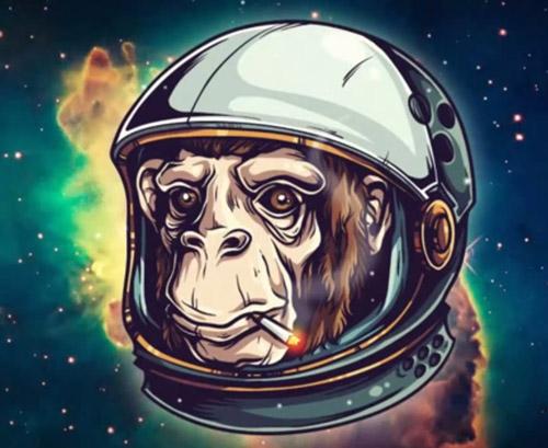 Create a Space Chimp Illustration Tutorial
