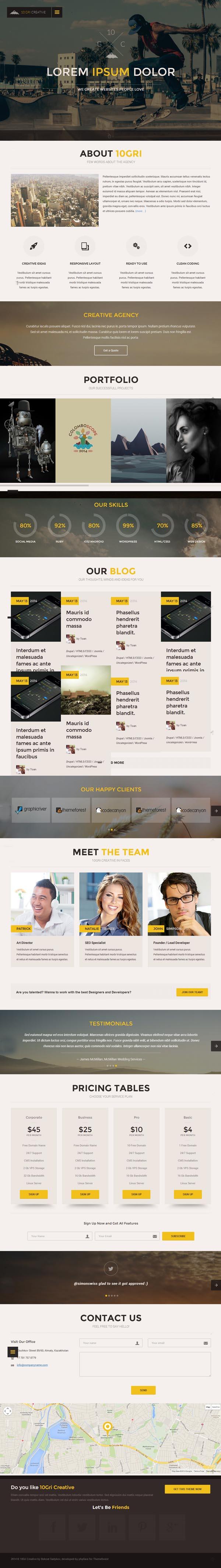 10GriCreative Responsive Onepage WordPress Theme