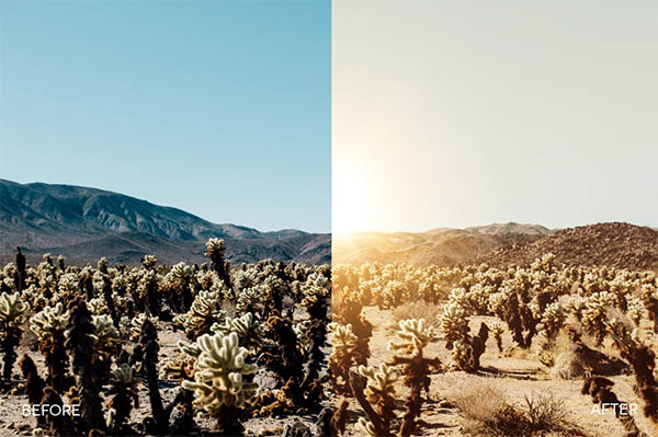 140 Breathtaking Photoshop Actions For Designers - 6