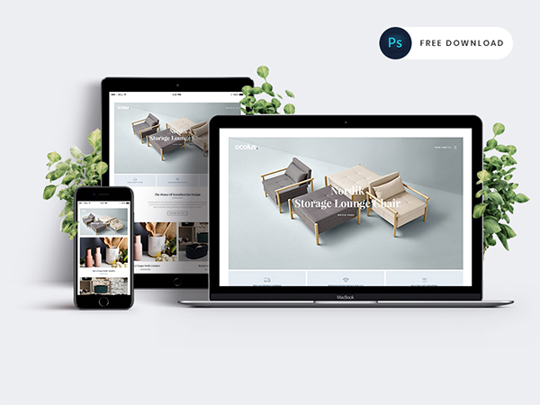 Ocolus - Creative & Modern E-commerce PSD