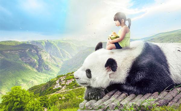 How to Create a Giant Panda Photo Manipulation