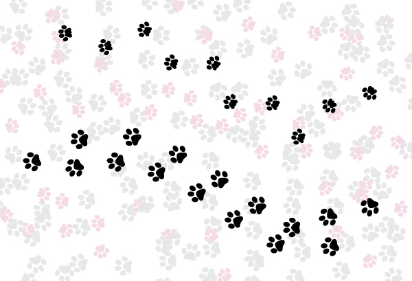 How to Create a Simple Paw Print Scatter Brush in Adobe Illustrator