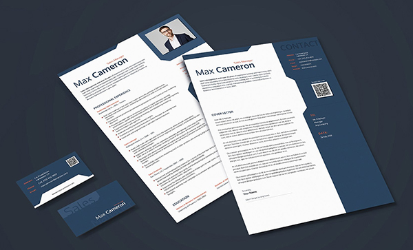 Editable CV for Sales Manager