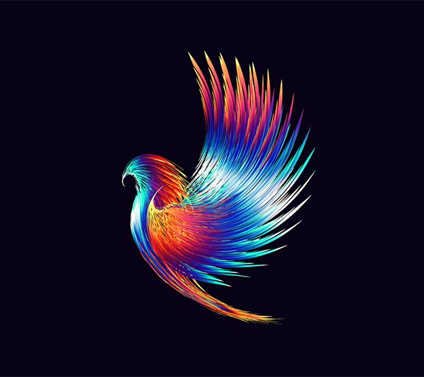 How to Creat Hawk Design in Illustrator