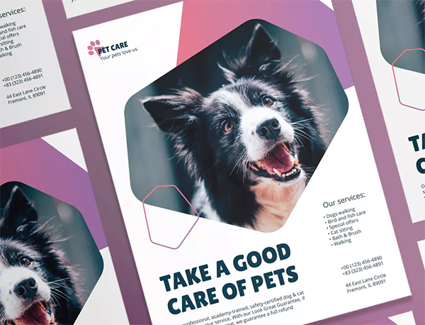 Pet Grooming Care Poster