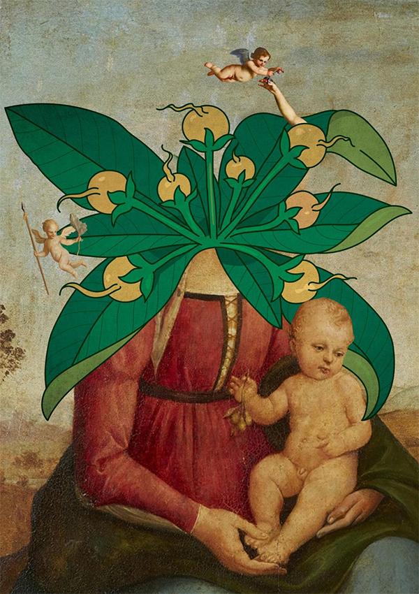 The Mandrágora (The Mandrake)