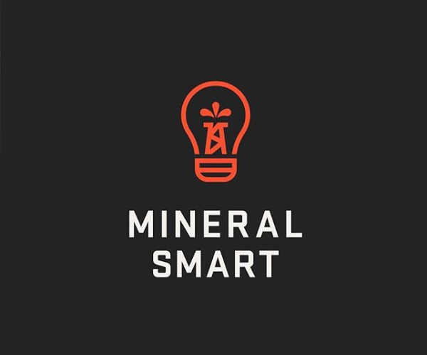 Mineral Smart Logo Design