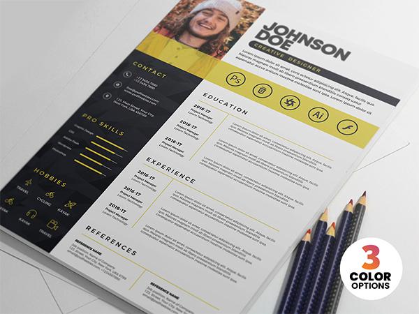 Professional PSD Resume CV Template