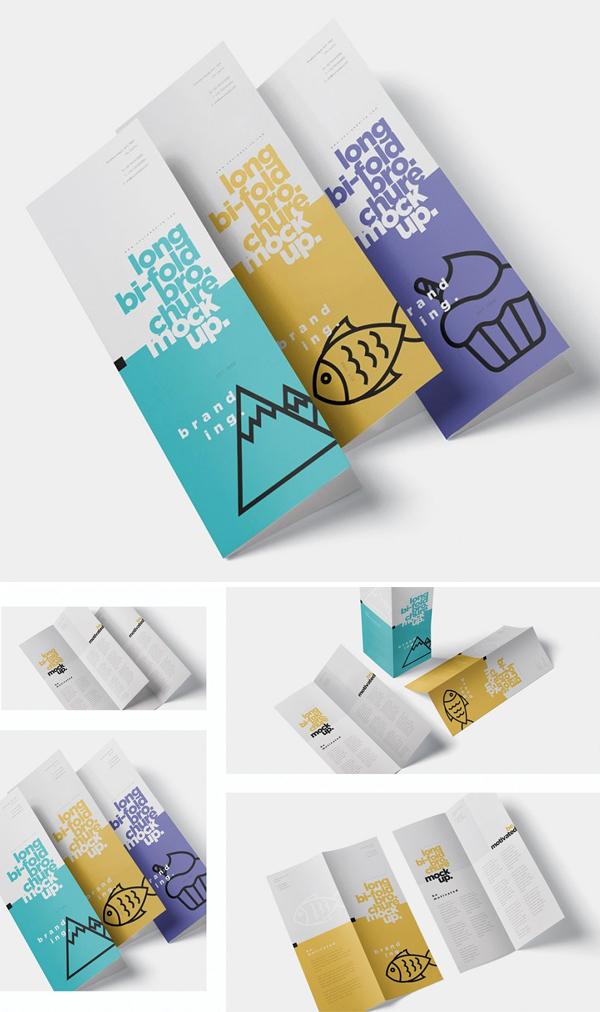 Long Bi-Fold Brochure