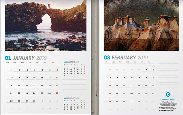 Stylish Wall Calendar 2019
