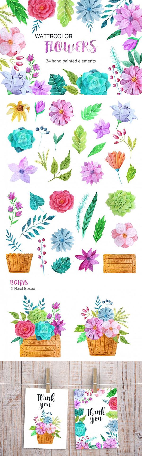 Free Watercolor Flower Pack