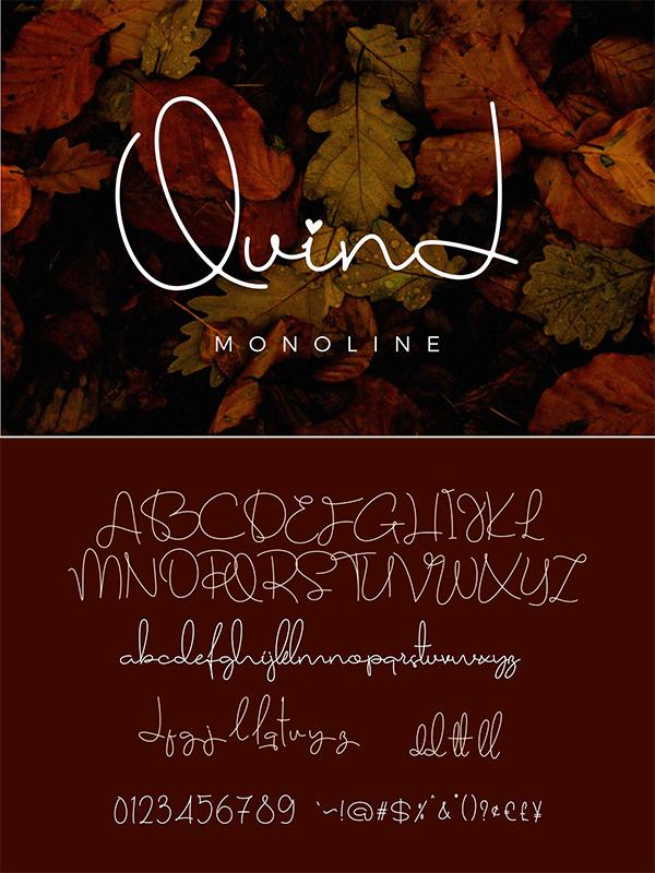 Quind Monoline Signature Font