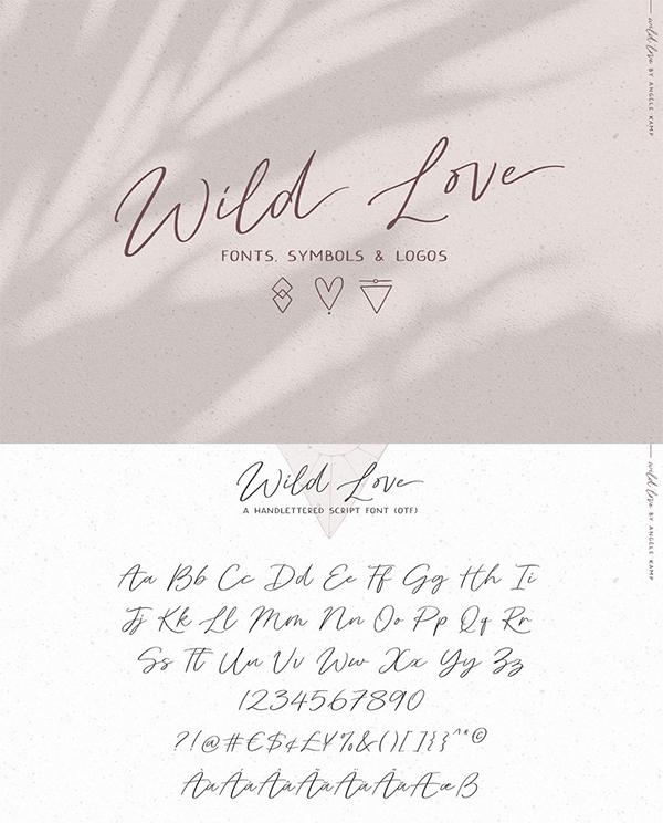Wild Love Fonts Symbols