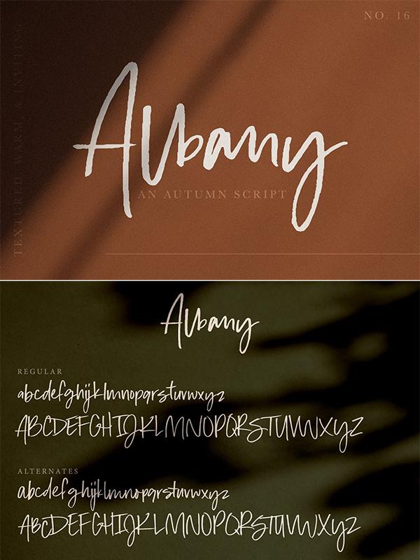 Albany | An Autumn Script Font
