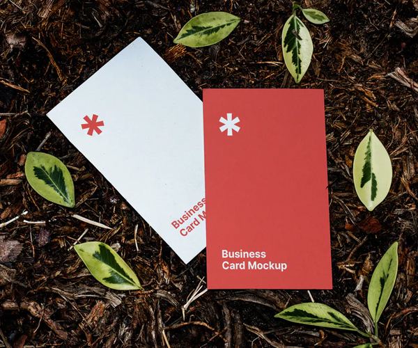 Business Card Mockup on The Ground
