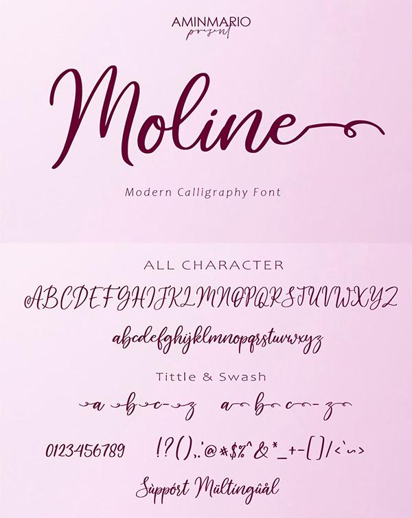 Moline Script Font