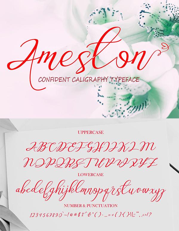 Ameston Script Font