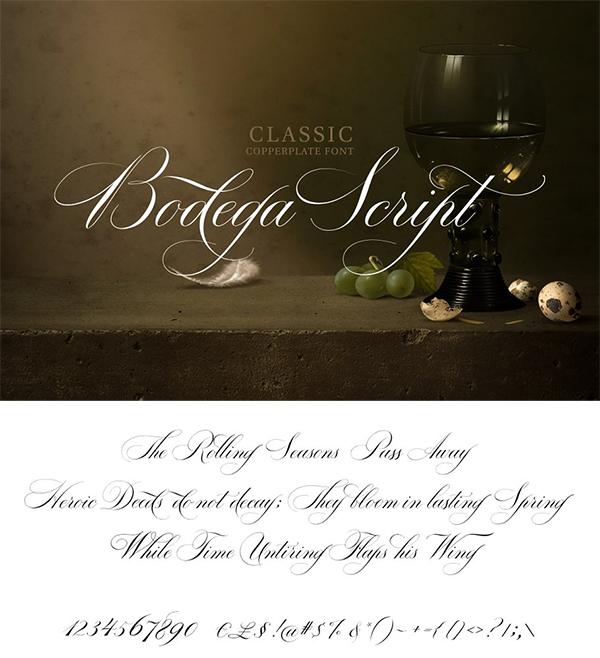 Bodega Script Elegant Wedding Font
