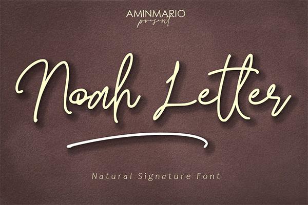 Noah Letter Signature Font