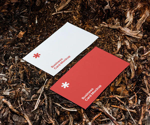 Attractive Business Card Mockup
