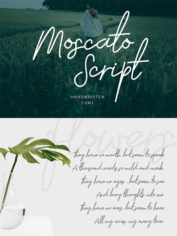 Moscato Script Font