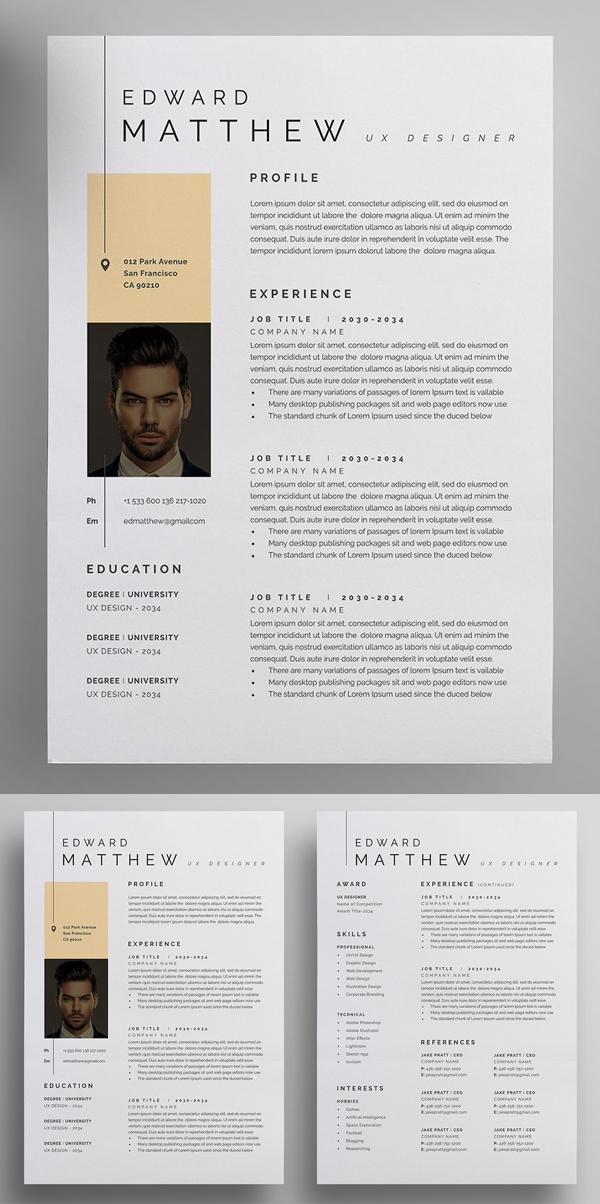 Modern and Professional Resume